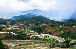 Террасы риса в Вьетнаме Стоковая Фотография RF