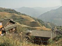 Террасы риса в фарфоре Стоковые Фото