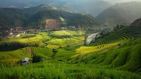 Террасы риса в Mu Cang Chai, северном Вьетнаме Стоковая Фотография