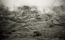 террасы риса горы Стоковые Изображения RF