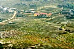 Террасы риса на горе стоковые фотографии rf