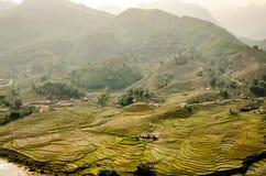 Террасы риса на горе стоковое изображение