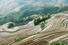Террасы риса на Longsheng, Китае Стоковое Фото