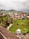 Террасы риса, поле на горе, естественные отступления риса, стоковая фотография