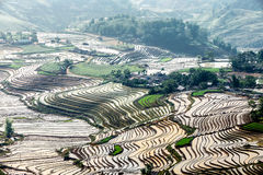 Террасы риса людей H'Mong этнических в y Ty, Laocai, Вьетнаме на сезоне воды заполняя (май 2015) Стоковые Фотографии RF