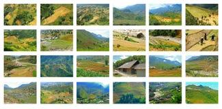 Террасы риса Sapa установленные изображений Стоковое фото RF