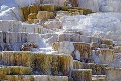 Террасы травертина, Mammoth Hot Springs, национальный парк Йеллоустона, Вайоминг стоковое изображение rf