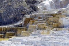 Террасы травертина, Mammoth Hot Springs, национальный парк Йеллоустона, Вайоминг стоковые фото