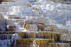 Террасы травертина, Mammoth Hot Springs, национальный парк Йеллоустона, Вайоминг стоковая фотография