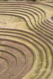 Террасы мурены, Cusco Стоковые Фото