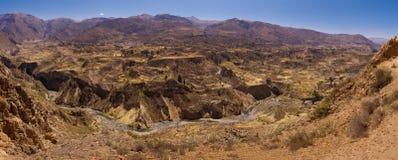террасы colca каньона Стоковое Изображение