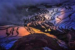 Террасы Honghe Hani стоковые фотографии rf