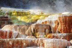 Террасы Mammoth Hot Springs Стоковое Фото