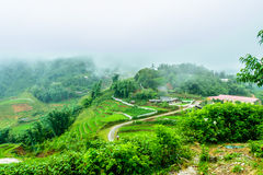 Террасы PA Sa, Вьетнам Стоковые Фото