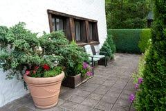 Территория дома украшена с огромным керамическим баком с цветками и хвойными деревьями стоковые изображения