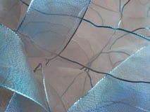 тесемка голубого коричневого цвета Стоковое Изображение