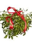 тесемка красного цвета mistletoe пука Стоковое Фото
