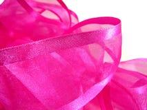 тесемка макроса розовая Стоковая Фотография