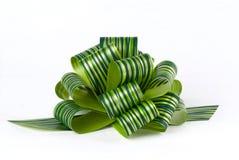 тесемка смычка зеленая Стоковые Фото