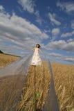 тесемки невесты длинние Стоковые Фото