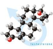 тестостерон 2 молекул Стоковая Фотография RF