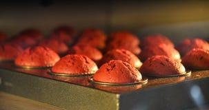 Тесто в прессформах для булочек в печи стоковая фотография rf