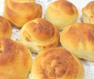Тесто печенья Стоковые Фото
