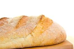 тесто хлеба кислое стоковые изображения