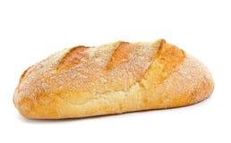 тесто хлеба кислое Стоковые Изображения RF