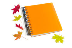 2 тетради и немного листьев осени Стоковые Фото