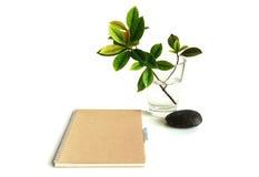 Тетрадь и листья Стоковая Фотография RF