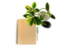Тетрадь и листья Стоковые Изображения