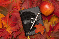 Тетрадь и кленовые листы Стоковые Фото