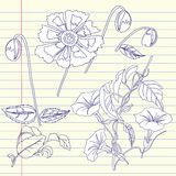 Тетрадь с вьюнком и цветками иллюстрация штока