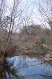 Техас 2014 Icestorm Стоковая Фотография