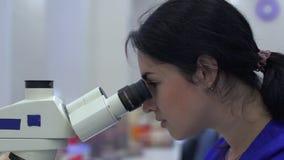 Техник лаборатории смотря в микроскопе акции видеоматериалы