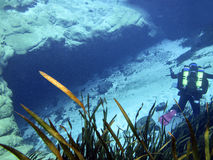 Технический водолаз пещеры - голубая пещера весны Стоковая Фотография RF