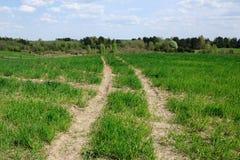 Технологический след на аграрном поле Стоковая Фотография RF