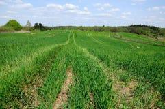 Технологический след на аграрном поле Стоковые Фото