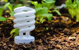 Технология зеленого света Стоковые Фотографии RF