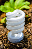 Технология зеленого света Стоковые Фото