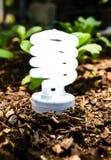 Технология зеленого света Стоковые Изображения