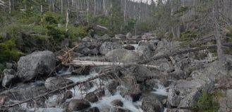 Течение воды стоковое изображение rf