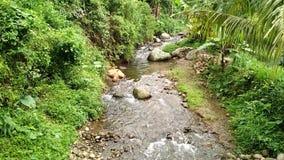 Течения реки ударили большие утесы, воду горы, течения реки в гористых местностях видеоматериал