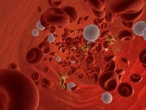 течь крови Стоковая Фотография