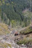 Тележка в лесе стоковая фотография
