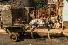 Тележка в Тринидаде, Кубе стоковое фото rf