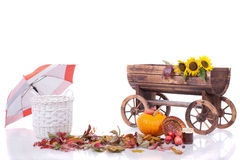 Тележка, листья, тыква, корзина, зонтик на белизне Стоковые Фото