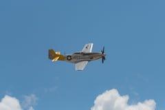 Тележка мустанга P-51D - спам может на дисплее Стоковое Изображение RF