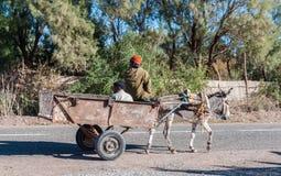 Тележка осла в Марокко Стоковое Фото